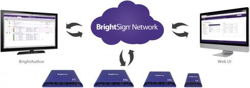 BrightSign networking